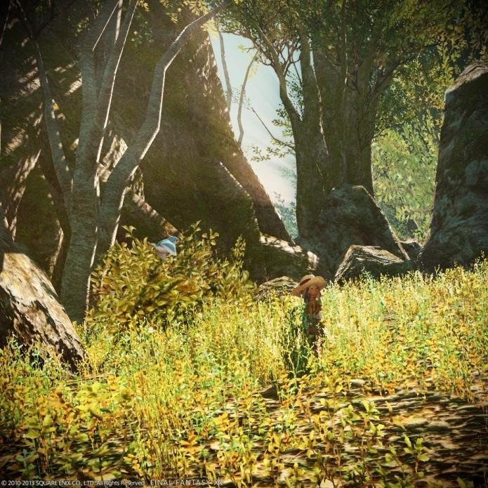 森で採掘(´・з・`)